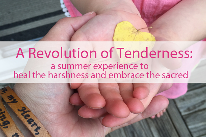 revolution_of_tenderness_summer_coaching